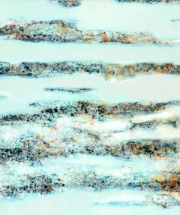 Ledonešis/70x90/drobė, aliejus/2008